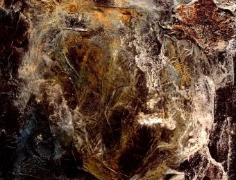 10. Spiritus Artifex Tellus Orbis Responsum, olio e carta su legno, dettaglio, 2013