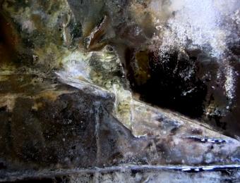 5. Olio su tela, dettaglio, 2013