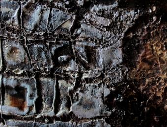 8. Olio su legno, dettaglio, 2015